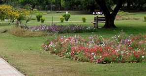 rosegarden-chandigarh